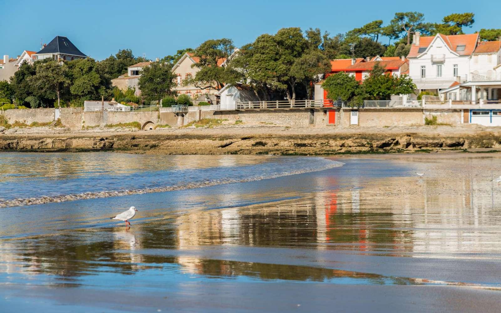 R sidence le phalene location vacances saint palais sur - Office du tourisme de saint palais sur mer ...